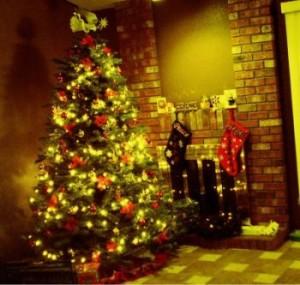 La Verdad de la Navidad