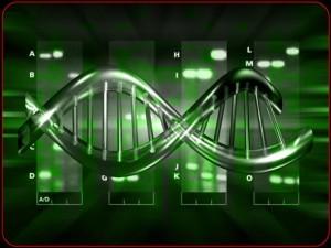 La Genética Humana N.1