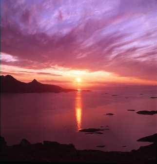 Vibración Celestial en la Melodía del Sol