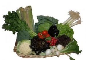 Verduras Ricas en Vitaminas y Minerales