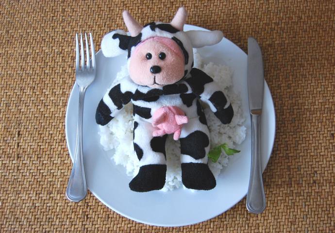 Sobre la Carne y  la Leche