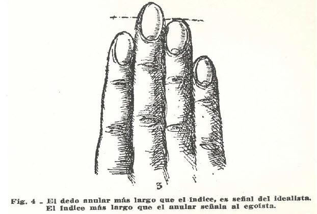 dedo-anular-normal