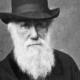 Conferencia 27: Por qué la teoría de la Evolución de Darwin es una mentira – Temporada I
