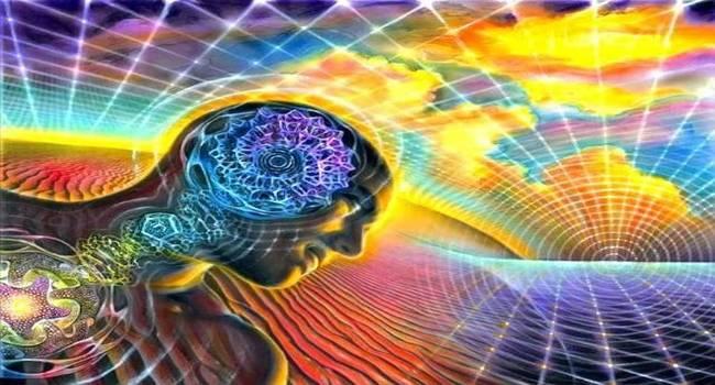 El Mensaje de la mente al cerebro, el hamen y la consciencia