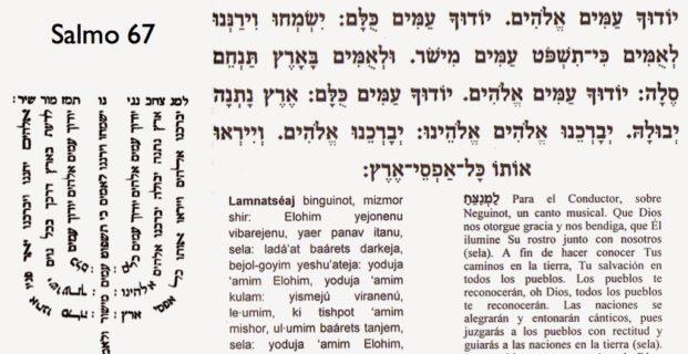 El 5 dia del genesis( Bereshit) de awerdo al midrash