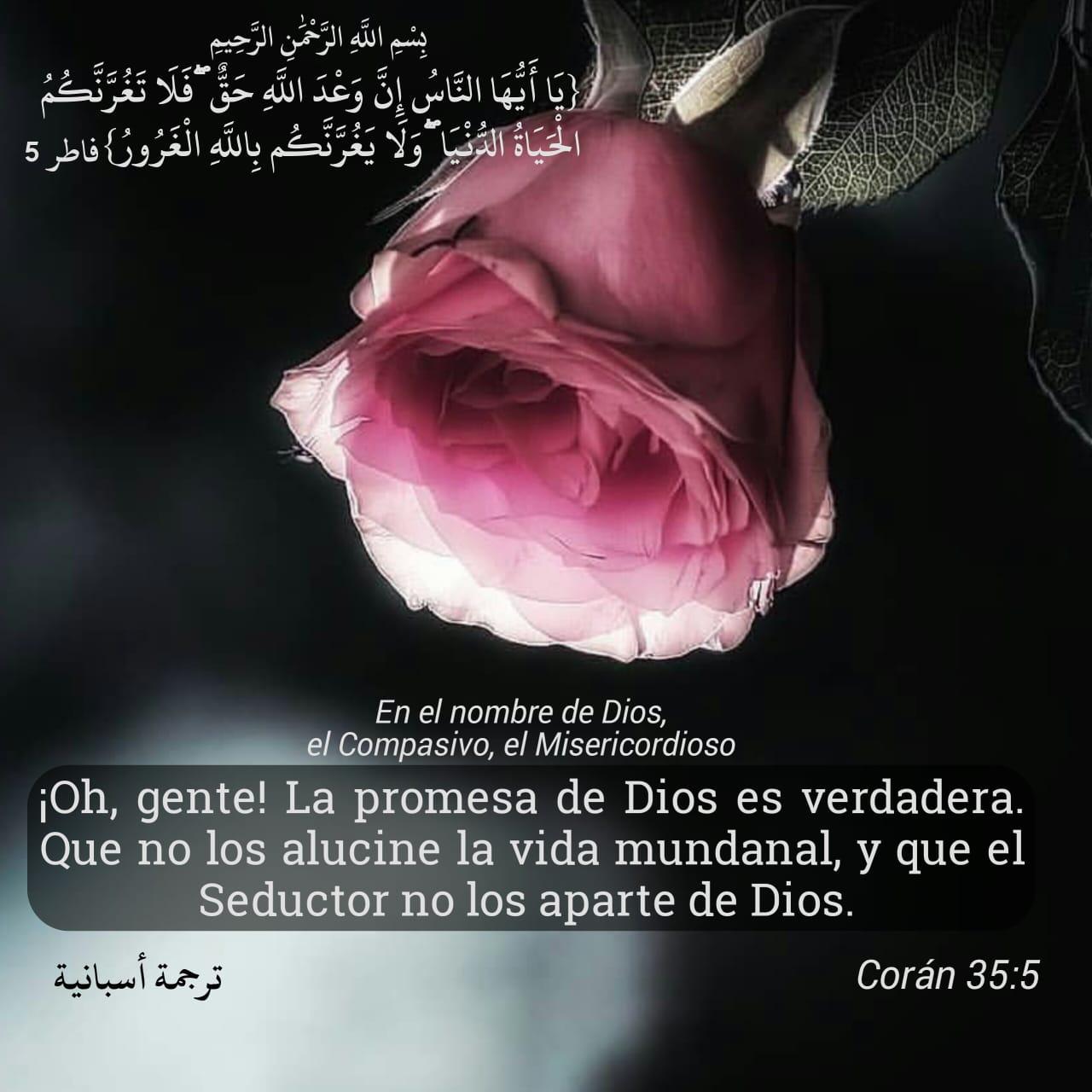 Libro Sagrado del Koran capitulo 15, 21